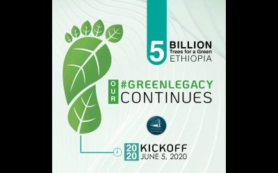 Ethiopia to Mass Plant Five Billion Trees Despite Coronavirus Pandemic
