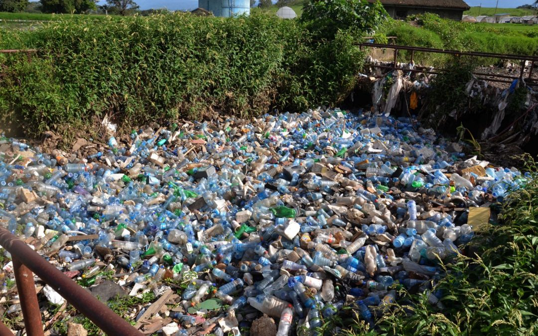 Single-Use Plastics Banned from Kenya Beaches and Parks